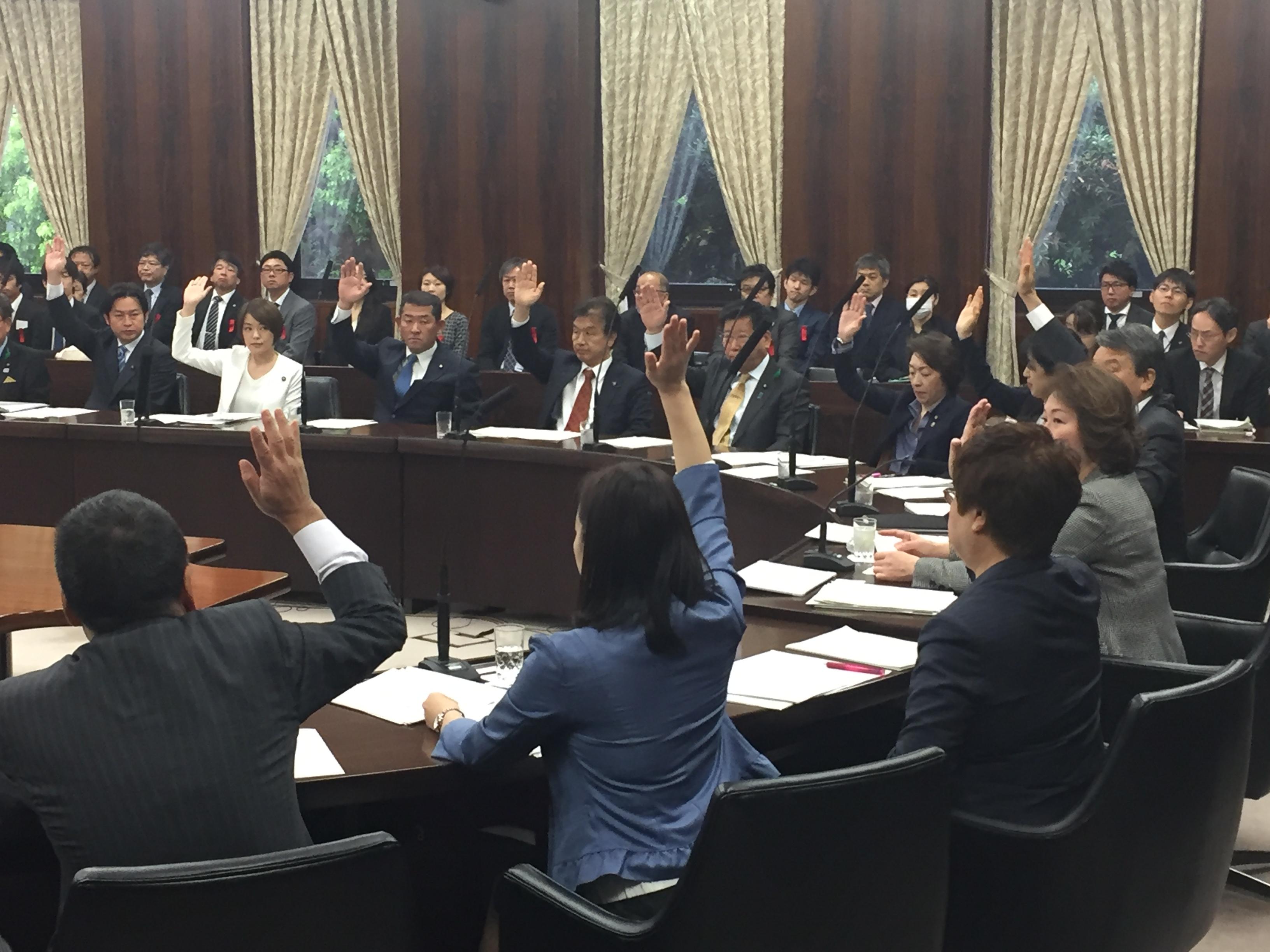 20180417参院文教科学委員会 障害者文化芸術法案